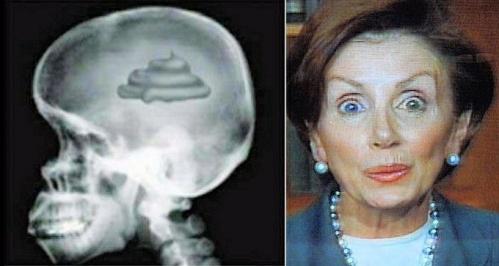 pelosi-brain